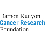 Damon Runyon Cancer Research Foundation