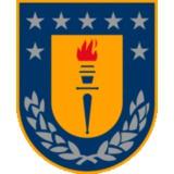 University of Concepcion